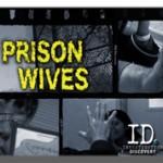 Broadcast Series, Graded for Amigo Media on behalf of Sirens Media